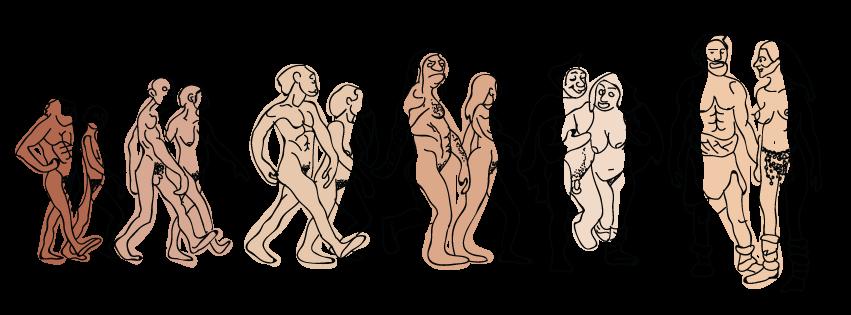 OBF_WEBSITE_SLIDER_EVOLUTION